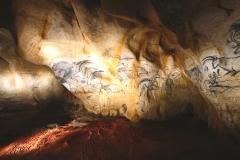 Caverne du Pont d'arc - Réplique de la grotte Chauvet